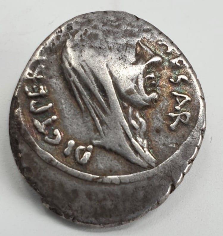 Roman Imperators, Julius Caesar, Silver Denarius, minted in Rome, Lifetime Issue, Feb-March 44 BC. P Sepullius Macer, moneyer